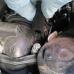 Castellated Socket 8pt - Renault R9M Turbo Outlet Manifold