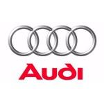 Audi (39)