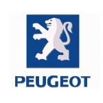 Peugeot (9)